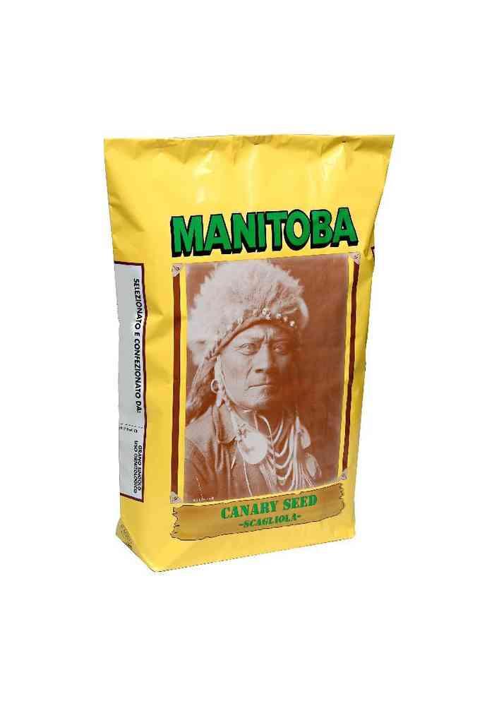 Manitoba Κεχρί Καναδά Indiano