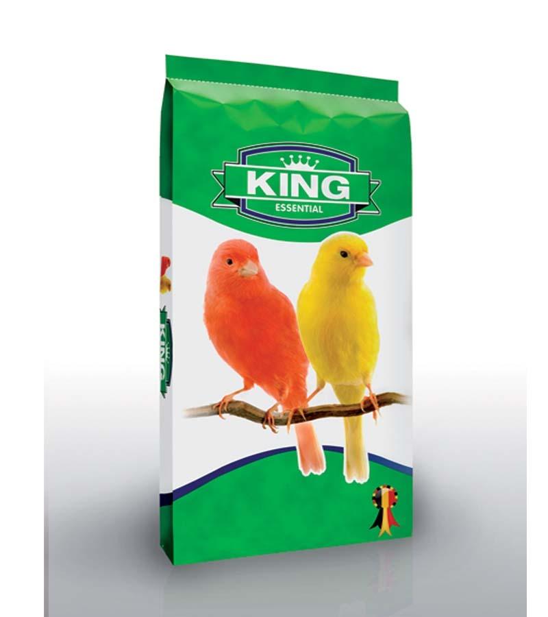King Canary
