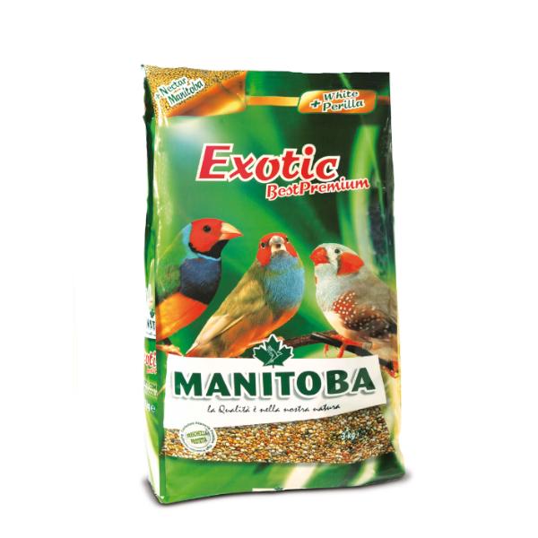 Manitoba Exotic Best Premium