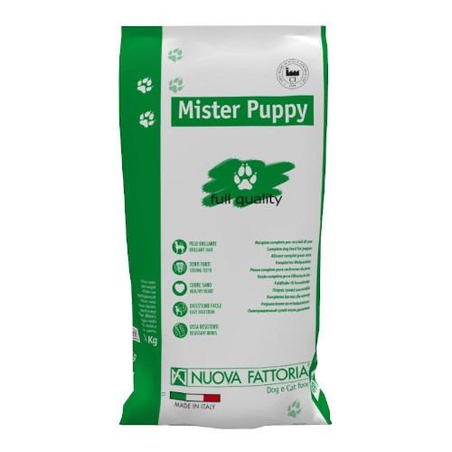 Mister-Puppy-lato-fronte