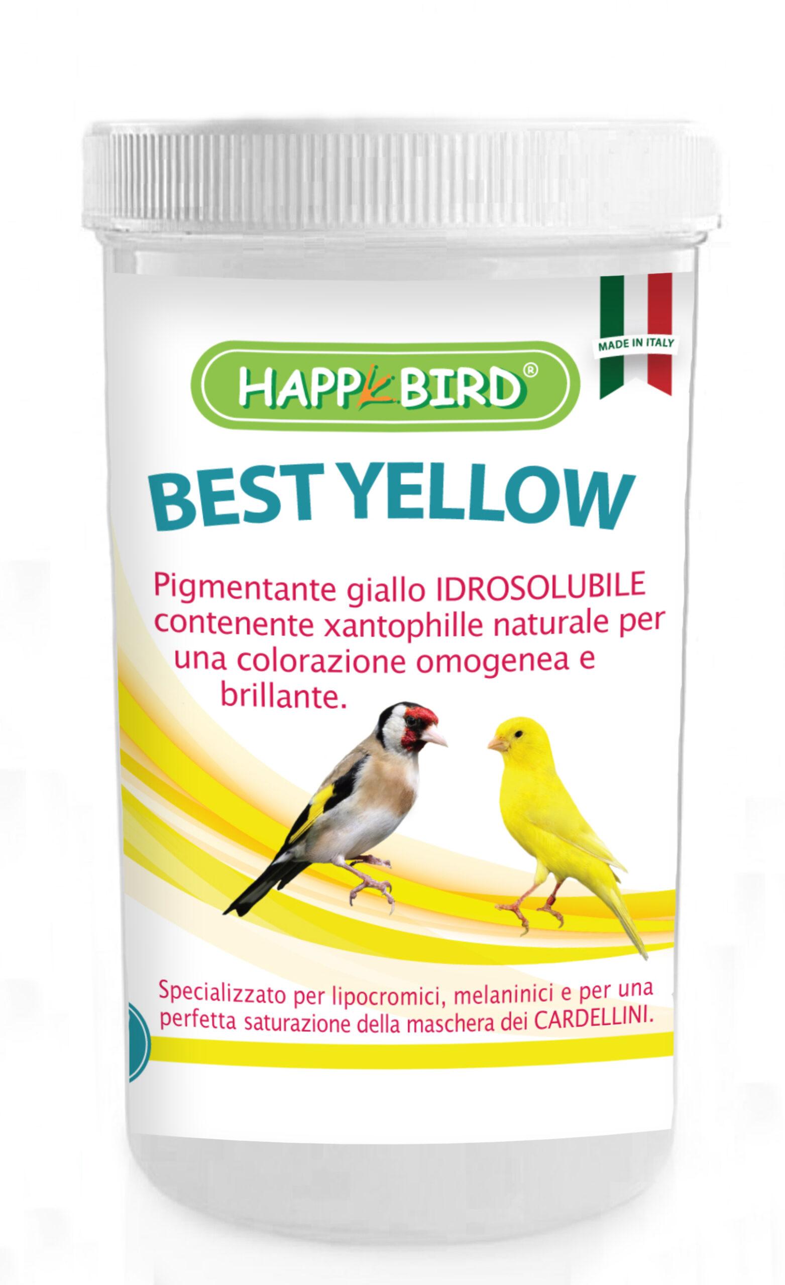 best_yellow_100g