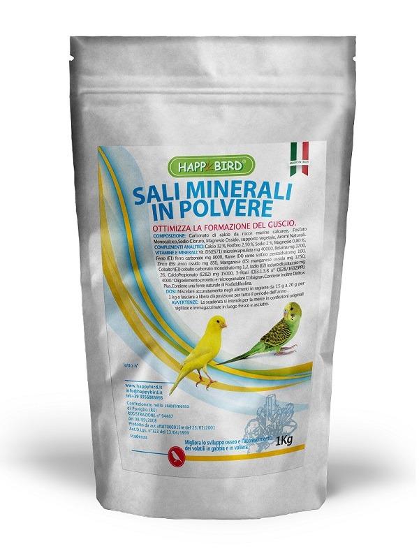 sali_minerali_polvere