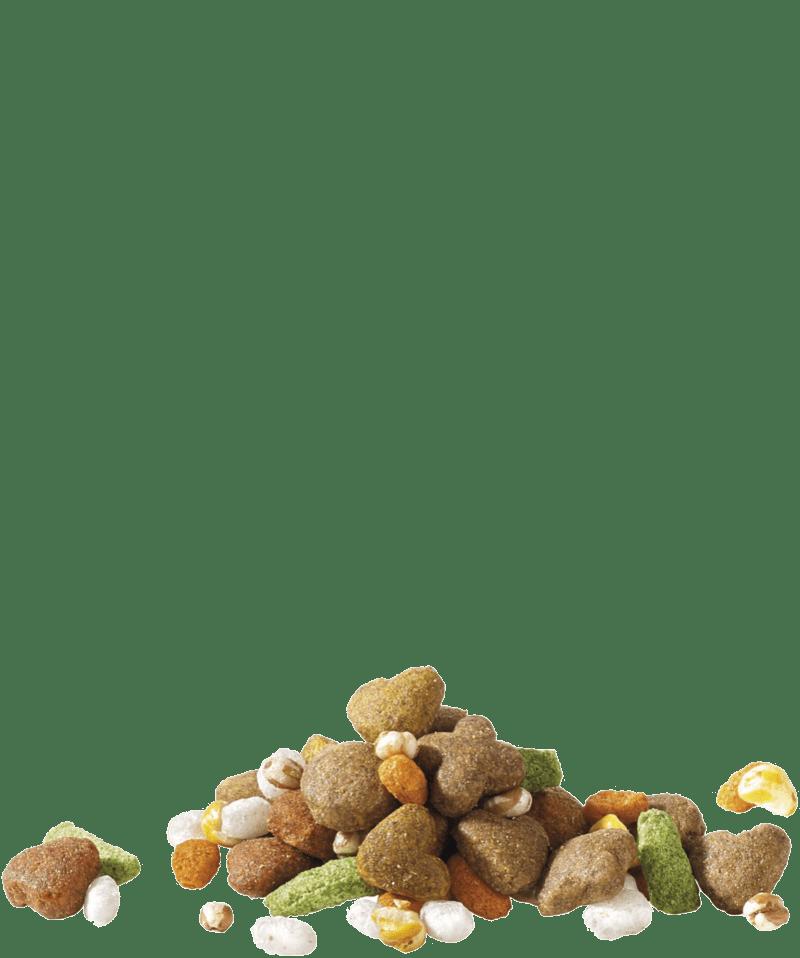 adultdinnerfood