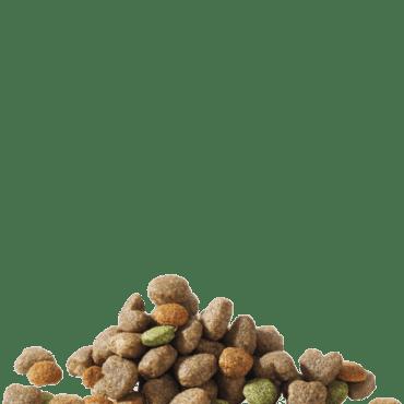 miniadultfood