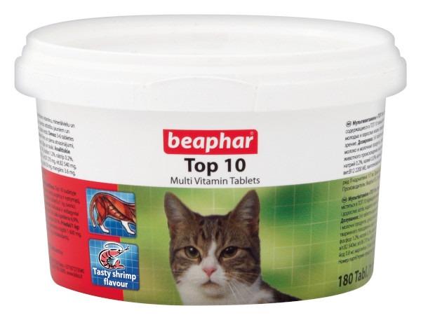 beaphat top 10 γατα
