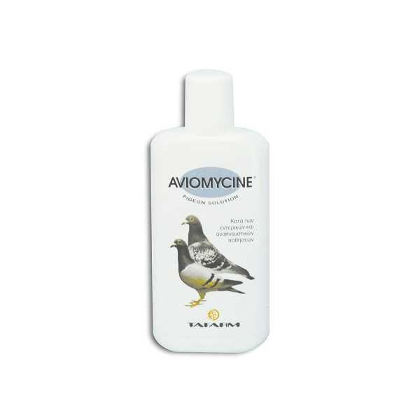 aviomycine-pigeon