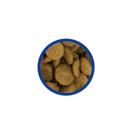 bono laky inside animal-foods.gr